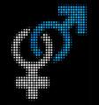 heterosexual symbol halftone icon vector image vector image