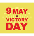 Victory Day may 9 Salute vector image vector image