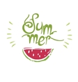 Watermelon print summer vector image