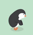 cute penguin cartoon vector image vector image