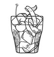 sketch - old fashioned cocktail vector image vector image