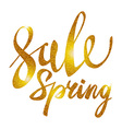 Spring Sale Gold inscription paint glitz glamor vector image