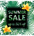 summer sale concept summer background vector image vector image