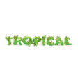 word tropical with capital vector image vector image