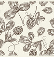hop seamless pattern doodle vector image