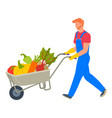 agricultural worker with vegetables in cart vector image vector image