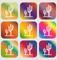 Cactus icon Nine buttons with bright gradients vector image vector image