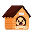 cute dog in wooden house and bone vector image vector image