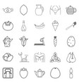 diet food icons set outline style vector image vector image