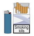 Open cigarettes pack with gas lighter Color vector image