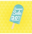 Summer Sale 20 per cent off vector image vector image