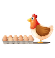 A chicken and a tray of eggs vector image vector image
