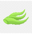 aloe plant icon cartoon style vector image vector image