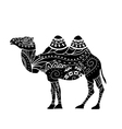camel silhouette with tribal ornaments isolated vector image vector image