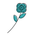 flower stem leaves nature petals decoration vector image