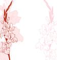 Gladiolus vector image
