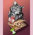 homeless hungry raccoon crying vector image vector image