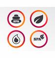 spa stones icons water drop with leaf symbols vector image