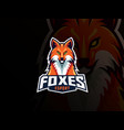 fox mascot sport logo design vector image vector image