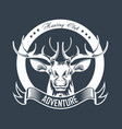 hunting club or hunt adventure logo template vector image