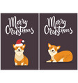 merry christmas set and dogs vector image vector image