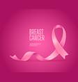 pink silk ribbon breast cancer awareness campaign vector image