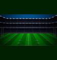rugby football stadium vector image