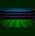 rugfootball stadium vector image