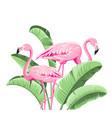 summer tropical frame exotic banana leaf design vector image vector image