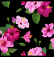 tropical hibiscus flower seamless background vector image vector image