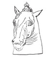 antique horse head is natural pattern in this vector image vector image