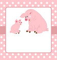 card template with cute pigs vector image