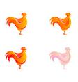 chicken logo template vector image vector image