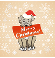 christmas card with cartoon dog vector image vector image