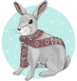 Cute rabbit with scarf winter background vector image vector image