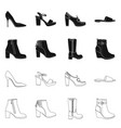 design of footwear and woman symbol vector image vector image