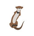lovely brown otter animal character vector image vector image