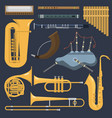 Musical wind brass tube instruments isolated on