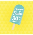 Summer Sale 30 per cent off vector image vector image