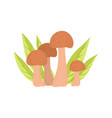 wild forest edible mushrooms eco product vector image vector image
