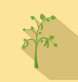 peas plant icon flat style vector image vector image