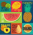pop art grunge style fruit poster set fruits vector image