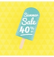 Summer Sale 40 per cent off vector image vector image