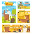 beekeeping and beekeeper honey apiary vector image