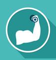 biceps icon vector image