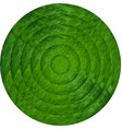 concentric green circles in mosaic vector image