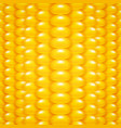 Corn Background vector image vector image