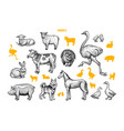 farm animals hand drawn set vector image vector image