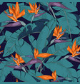 flowers and leaves strelitzia vector image vector image