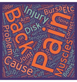 Injuries and Back Pain text background wordcloud vector image vector image